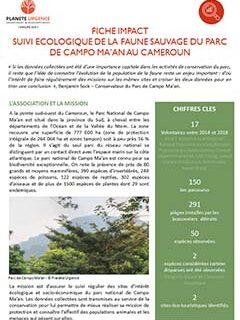 Suivi écologique de la faune sauvage du parc de Campo Ma'an -